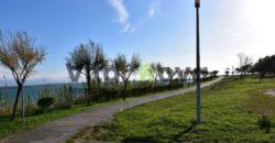Poljoprivredno zemljište, Privlaka, 1342 m2